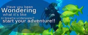 Discover scuba 3